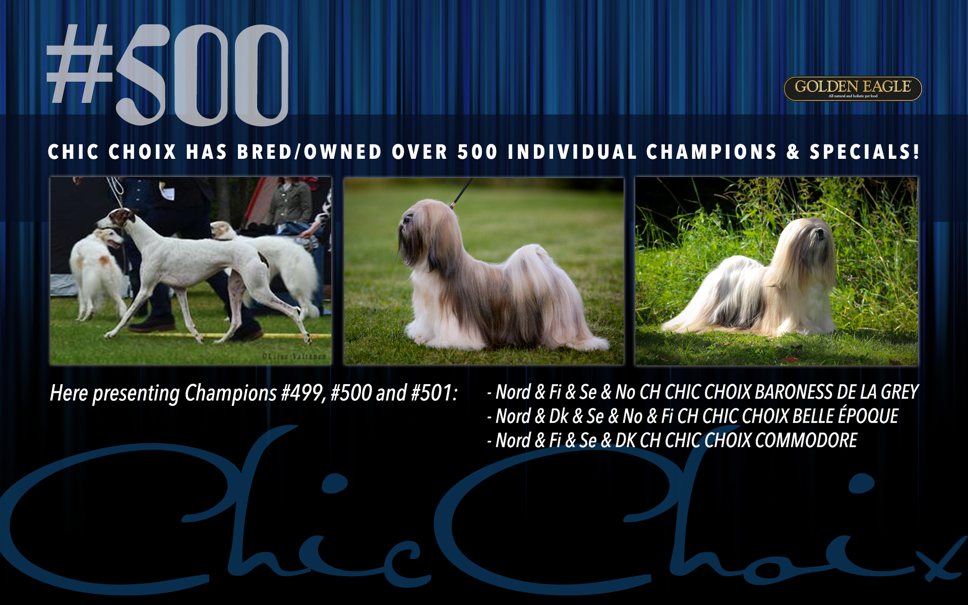500 Champions and Specials!